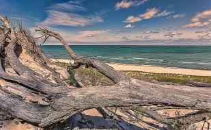 August Morning at Lake Michigan