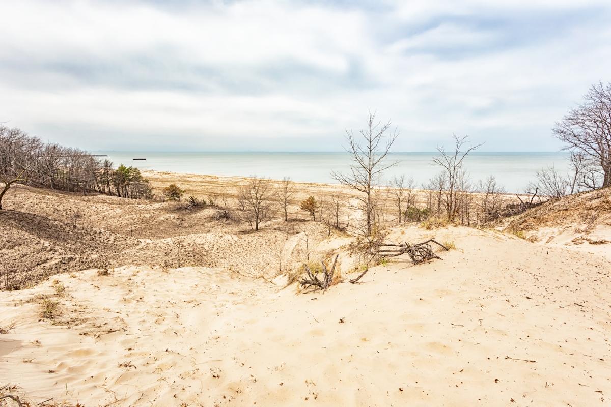 Beach Before Spill