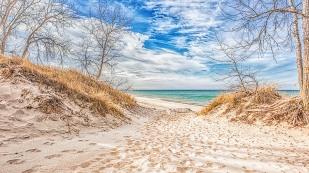 Beach Path in November