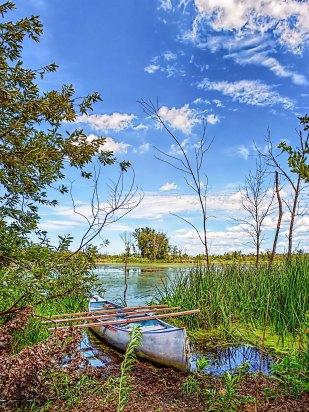 Boat at Edge of Marsh