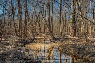 Creekside Trail