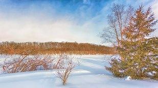Deep Freeze in January