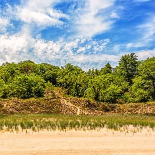 Dudley Cottage Site Landscape