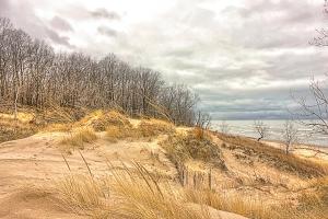 Dune in December