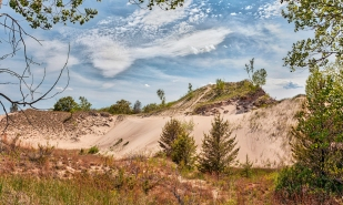 Dune in Early June