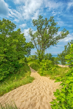 Dune Path in Late September