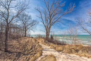 Dune Ridge Trail