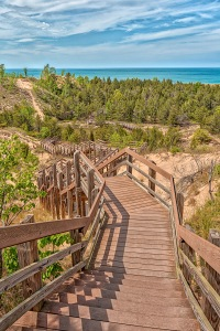 Dune Succession Trail