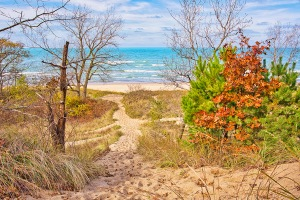 Dune Trail to Beach in Early November