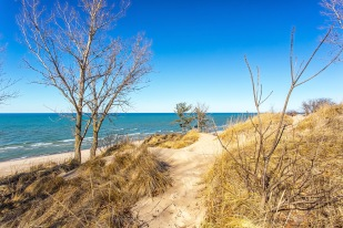 Dune Trail to Beach