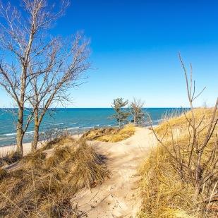 Dune Trail to Beach
