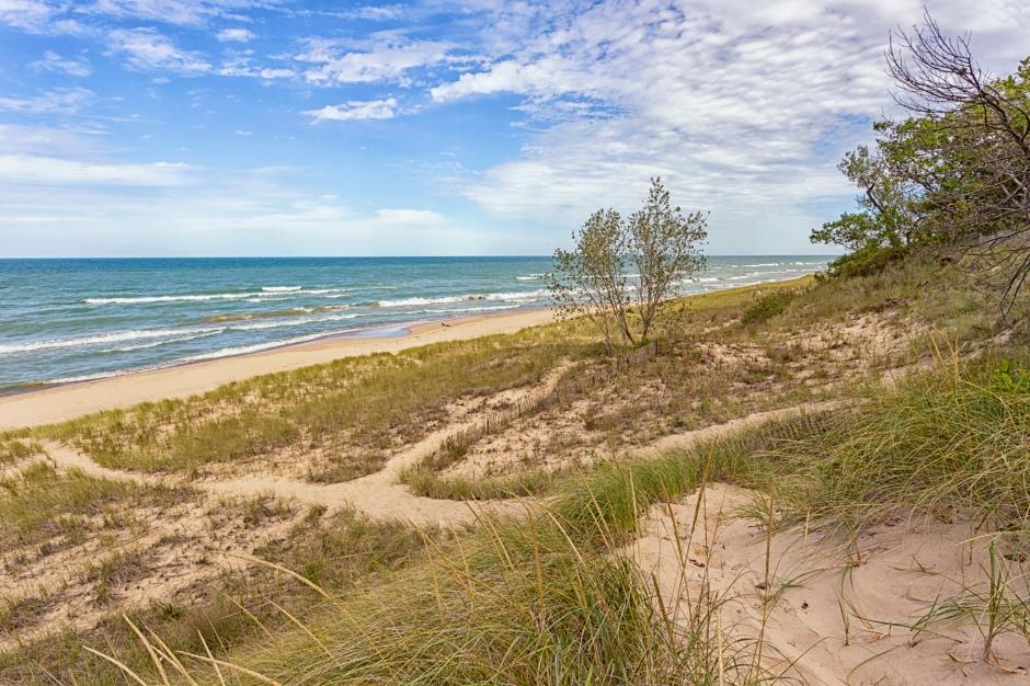 Dune Trail Toward Shore