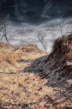 Dune Trail Under Darkening Skies