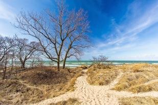Dune View