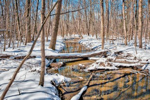 Dunes Creek After March Snow sm