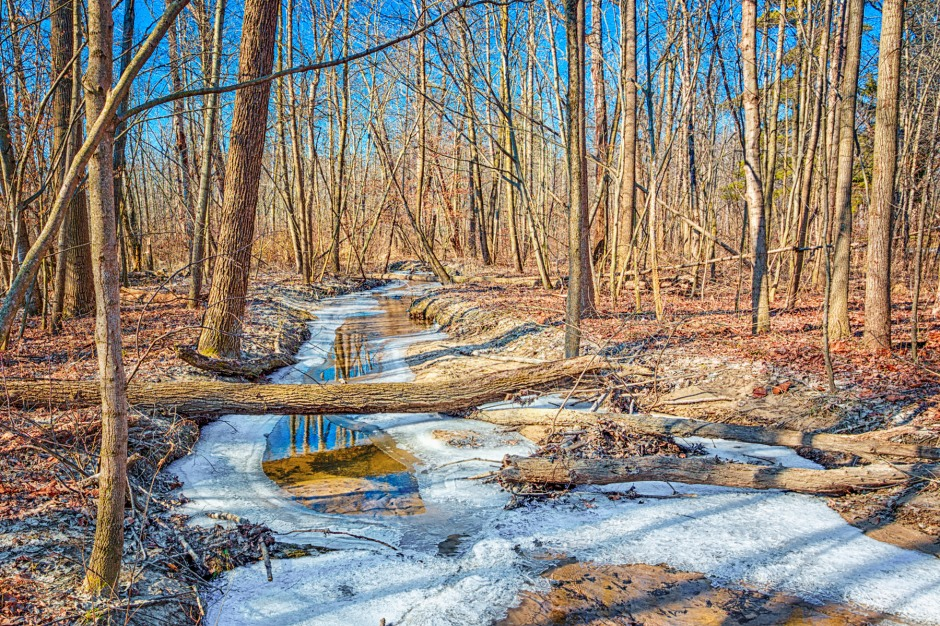 Dunes Creek in February Thaw
