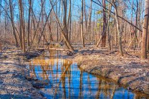 Dunes Creek in March sm