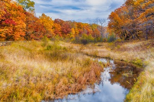 Dunes Creek in Middle of Autumn