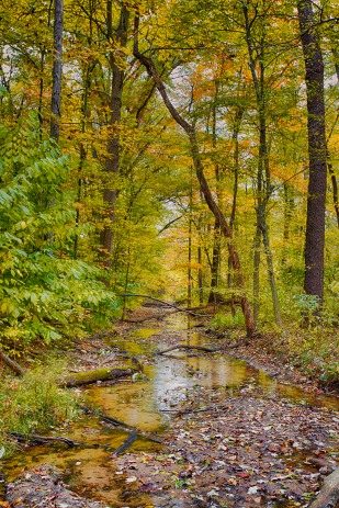 Dunes Creek in October sm
