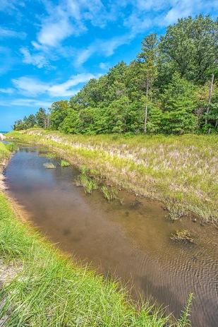 Dunes Creek in September