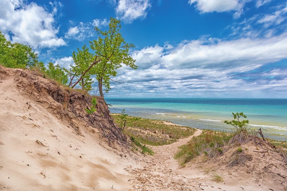 Dunes in Late May