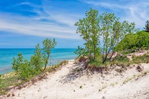 Dunes in June