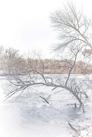 February Freeze