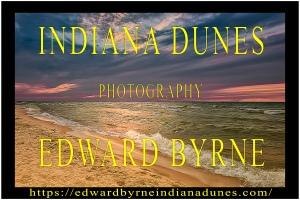 Indiana Dunes Poster