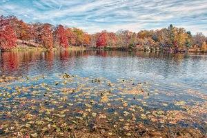 Lake in Mid-November