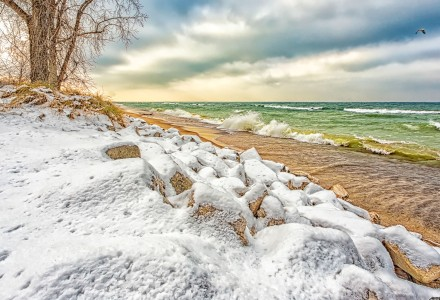 Lake Shore After First Snow