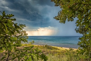Lake Squall Seen Through Dune Trees