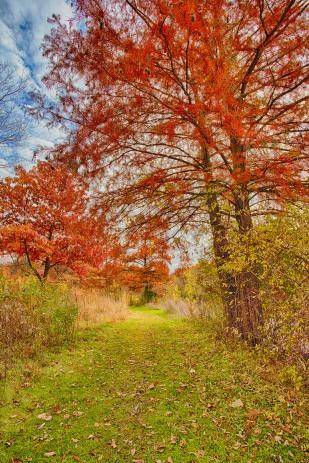 Lakeside Trail sm