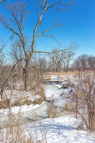 March Creek
