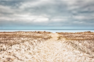 Path to Closed Beach on Overcast Day