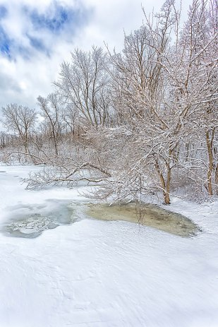 Pond After March Storm