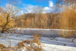 Pond After November Snow