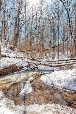 Ravine Creek Snow Melt in March