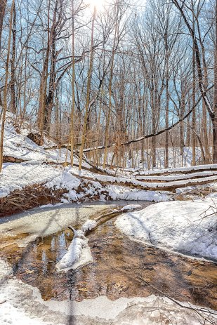 Ravine Creek Snow Melt in March