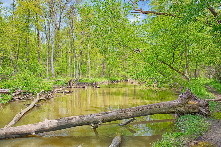 River Trail in Middle of May