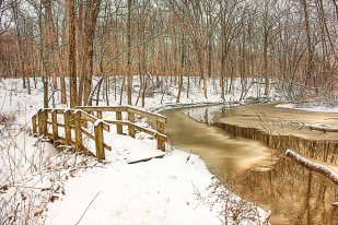 Riverside Trail in Winter