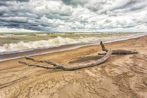 Stormy Beach in Autumn