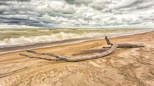Stormy Beach in September