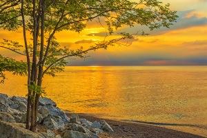 Summer Stillness at the Shore