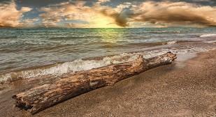Sun and Shore