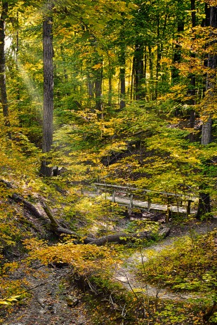 Trail Bridge sm_edit
