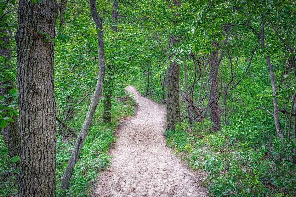 Trail Eight