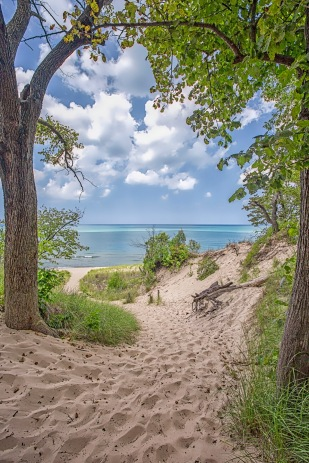 Trail Four Toward Shore