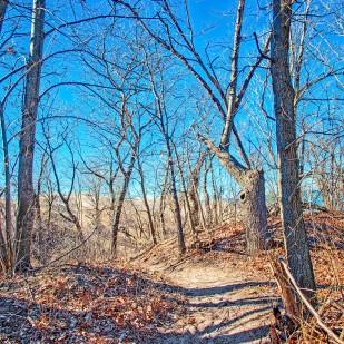 Trail Three