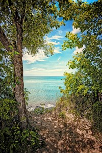 Wooded Trail to Beach