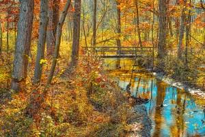 Dunes Creek Trail Bridge in Autumn